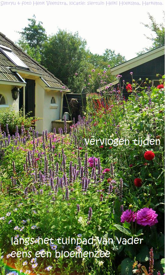 Gedichtopzondag 49 het tuinpad van mijn vader senryu for Www bloem en tuin nl