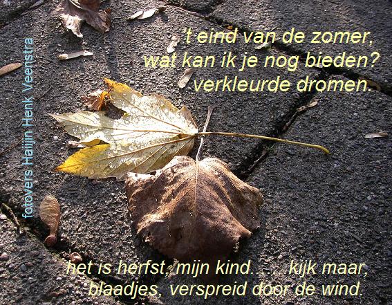 spreuken en gezegden over de herfst Fan van Friesland – Pagina 69 – Een anderhalftalige mix site over  spreuken en gezegden over de herfst