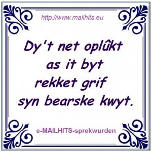 e-Sprekwurd-BEARSKE_