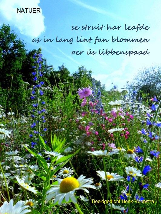 FH bloemenzee