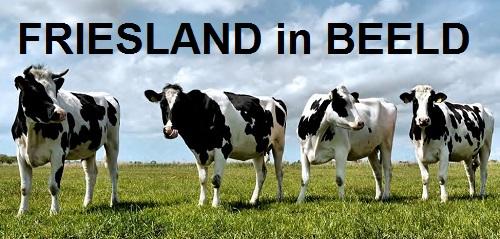 Friesland in beeld ABN