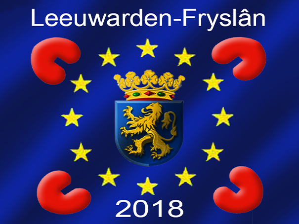 Vlag Leeuwarden-Fryslân 2018 2018