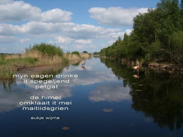 Friesland-MAIL+Poëzioe/Aukje Wijma.