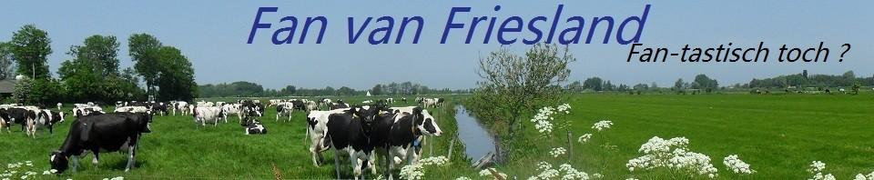 Fan van Friesland